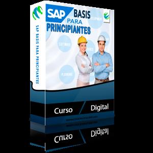 SAP Basis para Principiantes